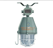 Flameproof J Hook Light Fixture